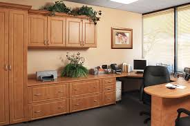 07-Online Cabinets and Storage Options for the Home, Office and Business Space
